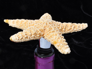 Starfish bottle stopper, mhstudios